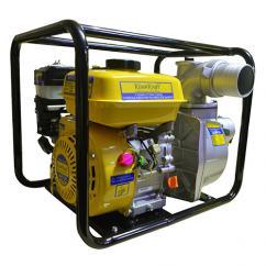 Petrol engine pump