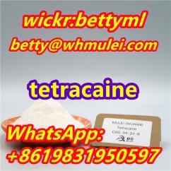 tetracaine powder 94-24-6 tetracaine China supplier tetracaine hcl