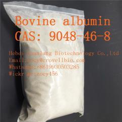 Bovine albumin manufacture factory Bovine albumin price  8619930503285