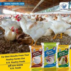 Best poultry feed manufacturing plant
