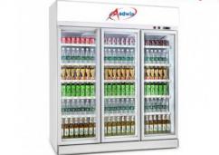 New Designs Two Door Freezer Manufacturers In India