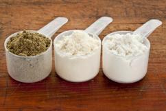 Whey protein powder supplier, manufacturer & exporter