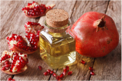 Pomegranate Seed Oil Manufacturer