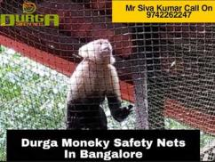 Monkey Safety Nets In Bangalore
