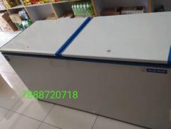 Blue Star 500lt. Deep fridge