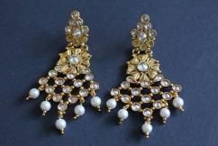Designer Beautiful earrings