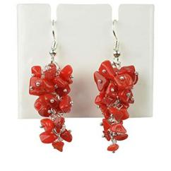 Beautiful earrings with red stones