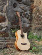 Solid wood Handmade Guitars