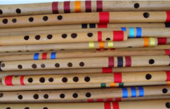 FLUTE professional quality, RAW BAMBOO - Assam - for flute making