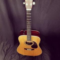 Hobner Guitar In Gently Used Condition
