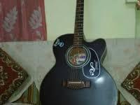 Hobner Guitar With its case