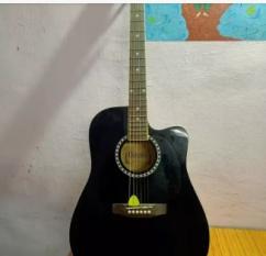 Aquatic Guitar  DOLPHIN