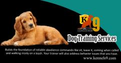 Dog And Pet Training Services