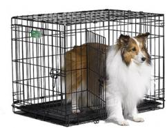 Dog cat cages available for sale