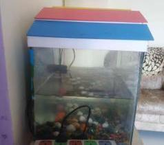 Used Fish Aquarium
