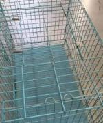 Cage For Dogs Available