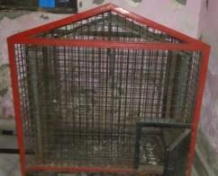 Cage For Rabbits Available