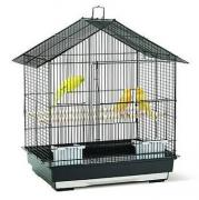 Cage for birds in best pricing