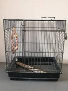 Cage for bird in less used Condition