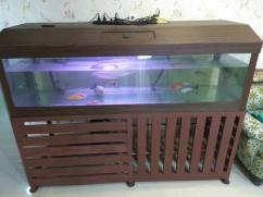6 feet Aquarium tank