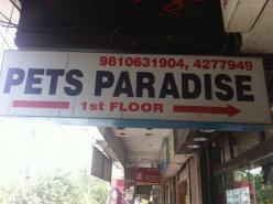 Pets Paradise, Noida