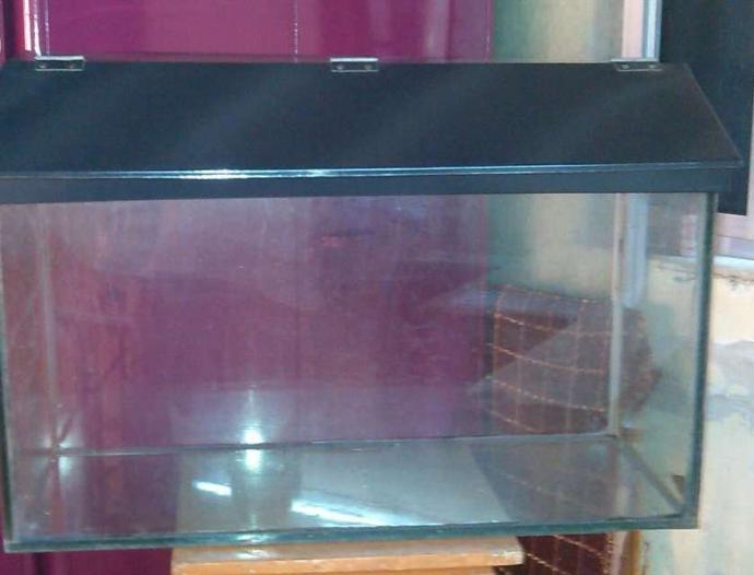 2.5 feel fish tank with black shed