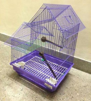 Birds Cage In Purple Colour