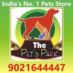 DOG PUPPIES  PERSIAN KITTEN THE PETS PARK 9021644447