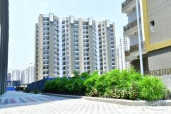 3 BHK for rent in Stellar one