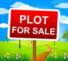 plot for sell