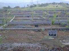 1R to 5R plots for sale in katraj pune
