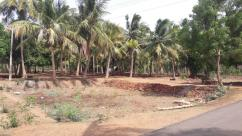 DTCP Approved plots for sale in Nehru nagar