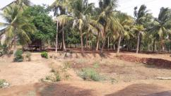 Available plots for sale in Nehru nagar