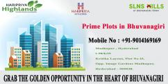 Prime Plots in Bhuvanagiri