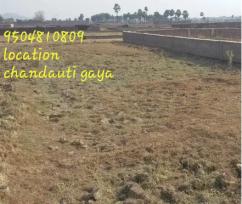 Best plot in chandauti near chandauti currently living location