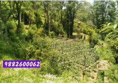 19 Biswa Land available For Sale in Solan ,HP