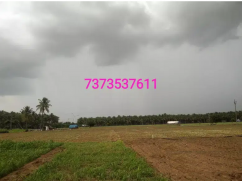 3 aceres Agri land for sale