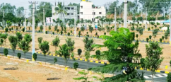 Resort-Theme Residential Plots