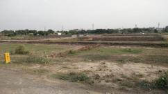 Sector 162 Noida Free Hold residential Plots 1500000 50 sq