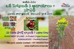 22 cents Plantation Plots in Addanki,Prakasam district for 7 lakhs