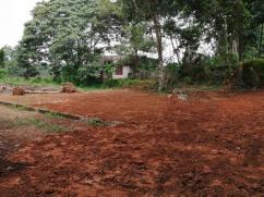 5cents Residential land near Eruveli Chottanikkara