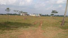 DTCP apporved plots in nemili village