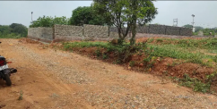 Amazing location for farmhouse in badhani pathankot.