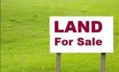 Honey golf green 260 sq yard residential plot only in 40,000/sq yard.