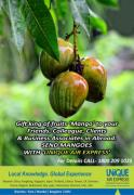 Gift King of fruits Mangoes to your liked person who they staying in Uk,USA, an