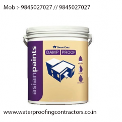 V S Enterprises Asianpaints Smarcare Damp Proof  Asian Paint Smarcare Damp Pr