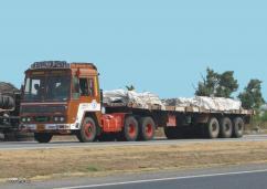 Trailer Truck Transport Delhi