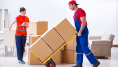 Tanu Logistics and Packers- Trusted Packers and Movers in Delhi