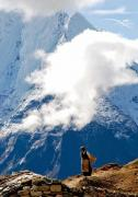 Tour Packages for Sikkim Darjeeling