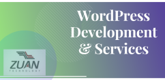 WordPress Development Services  wordpress designing company